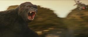 Kong2 (1)_0