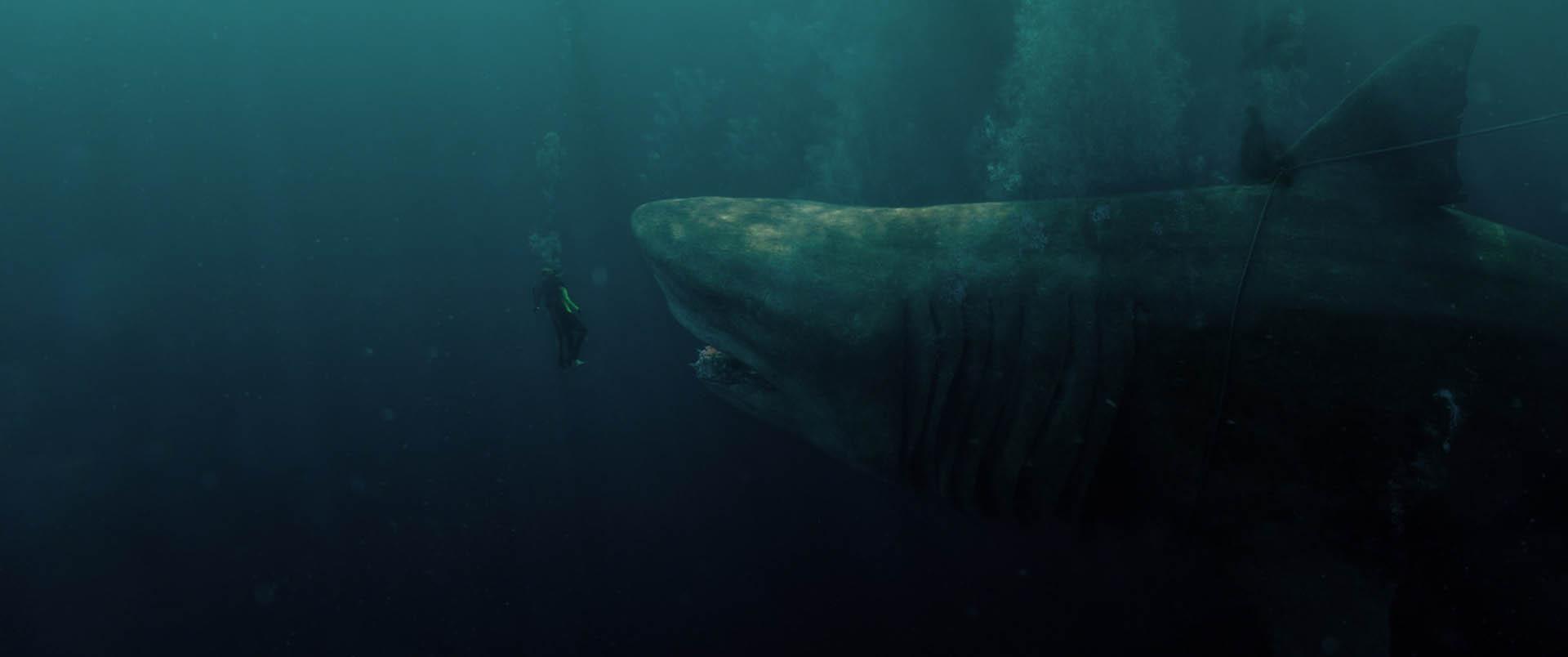 Shark   Il primo Squalo_foto dal film 8