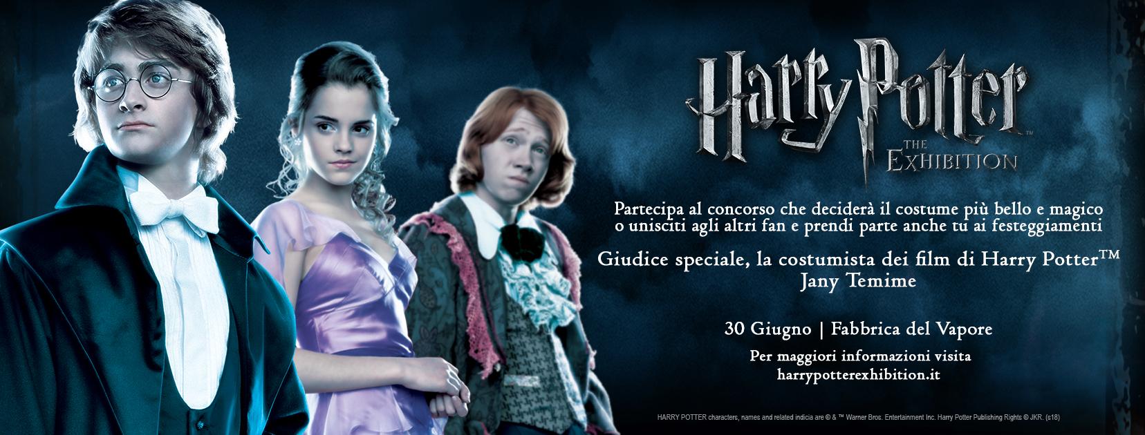 Harry Potter - Exhibition Contest