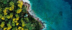 Fantasy Island _header